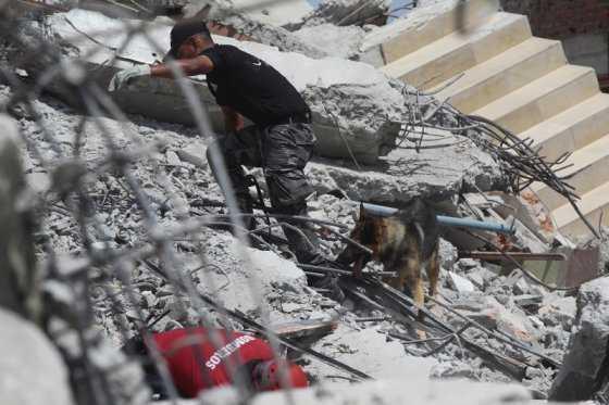 La vida surge entre los escombros que dejó terremoto en Ecuador