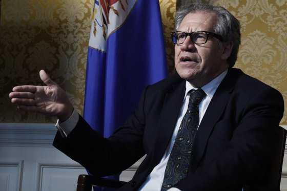 ¿Qué es y cómo funciona la Carta Democrática de la OEA?