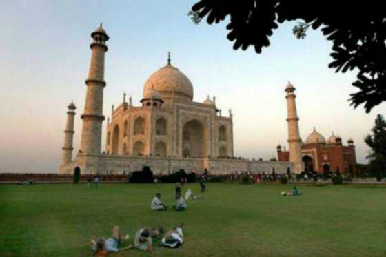 ¿Por qué el Taj Mahal se está poniendo verde?