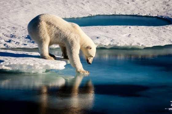 Trump reduciría el presupuesto de la Nasa para investigar cambio climático