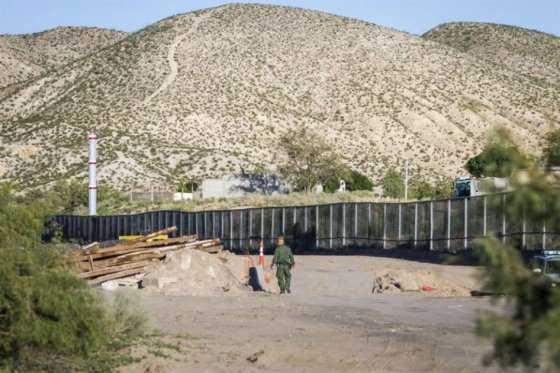 «En meses» comenzará construcción del muro en frontera con México: Trump
