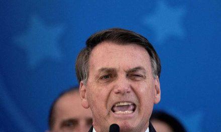 Una plaga de ratas rodea el palacio de Bolsonaro