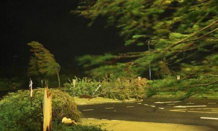 El poderoso huracán Laura azota a los estados de Luisiana y Texas (EE. UU.)