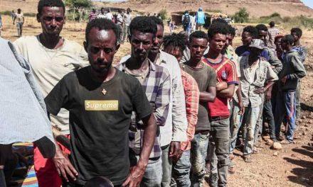 Al menos 600 civiles murieron en la masacre registrada el 9 de noviembre en Tigré