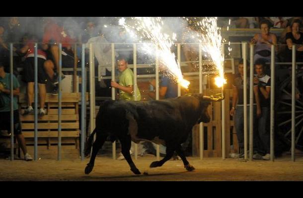 Francia retira las corridas de toros de su patrimonio inmaterial