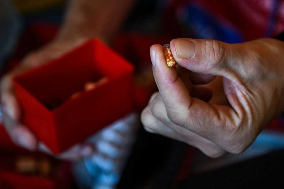 Ciudad de Florida demanda a grandes farmacéuticas por crisis de opiáceos