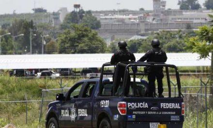 Hallan al menos 18 bolsas con presuntos restos humanos en estado de México