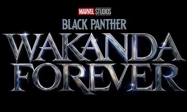 """""""Black Panther: Wakanda Forever"""": sinopsis y fecha de estreno"""